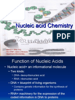 Chemistry of Nucleic Acid (2)-doc viliran 06/11/09