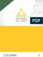 Brochure Triangulo de Oro