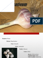 Ppt Garlic