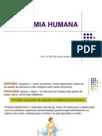 anatomiahumana-100813065313-phpapp01