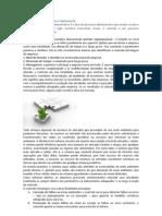 Controle Estratégico.docx