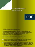Proteccion Neurologica en Accidentes