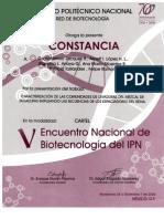 V ENB IPN Caracterizacion