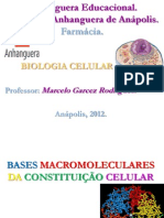 Aula 2 - Macromoléculas