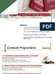 Empreendedorismo - 2 Seguranca - Slides 2012