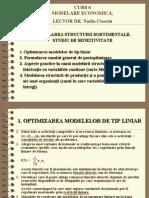 curs5 modelare economica 2008 - nadia ciocoiu