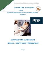 Prevencion de La Preeclampsia Ok 2013