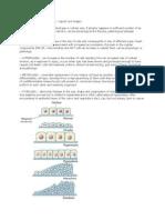 Basic Cellular Pathophysiology