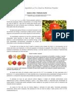 Historias Interessantes de Produtos Naturais14
