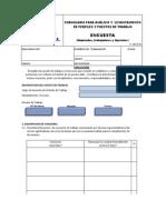 Analisis Para Puestos de Trabajo APT PRODUMINSA 2013
