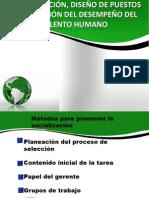 DISEÑO PUESTOS.pptxmodificado