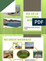 Eia y La Industria Minera Rodriguez Flores, Richard}
