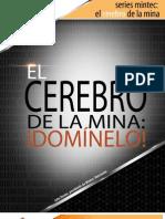 Www.minesight.com Portals 0 Whitepapers Spanish Brain of the Mine