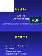 Mastitis Notes