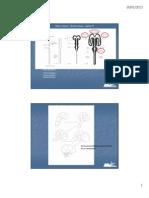 sistema nervoso encefalo e nervi cranici capitolo 15