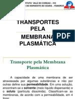1.1. Aula Fanorce-_-ivc - Transporte Pelas Membranas