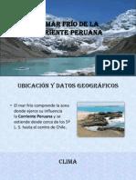 ecologia del peru.pptx