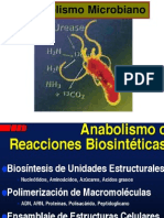 Clase 3- Metabolismo Microbiano1