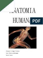 Anatomia Humana Parte 1