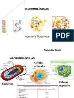 II Macromoleculas
