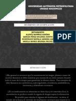 Presentación1REGIMEN DE DOSI - copia