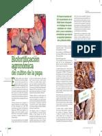 Biofortificación agronómica del cultivo de la papa