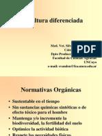 Avicultura_diferenciada.2008