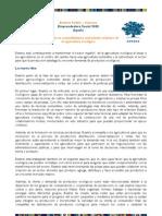 Beatriz Fadon_agricultura Ecologica