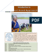 Introduction to Livelihood Framework