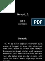Skenario 5 Blok 16 (Avian Influenza)