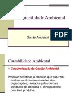 128470518-contabilidade-ambiental.pdf