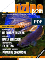 Betta 2 Revista