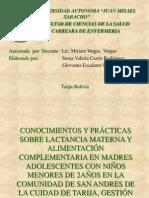 Lactancia Materna y Alimentacion Complementaria San Andres 2
