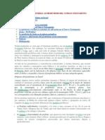 INTRODUCCIÓN GENERAL AL PROFETISMO DEL ANTIGUO TESTAMENTO.docx