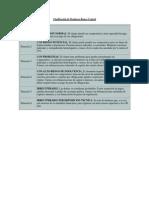 Clasificación de Deudores BCRA