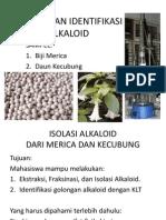 4-Praktikum Fitokimia Alkaloid