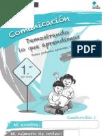 Comunicacin 1er-Periodo Web