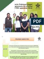 Videoconferencia Aprendices icfes 20 agosto 2013.pdf
