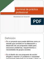 Proyecto terminal de práctica profesional