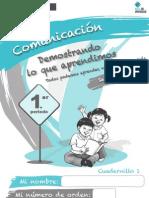 C1 Comunicacin 1er-Periodo Web