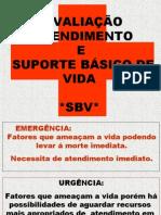 Avaliação Atendimento SBV 2009 (1)