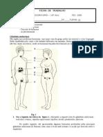 1192720943 Hormonas e Sistema Endocrino