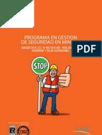 BROCHURE PGSEGMIN.pdf