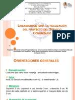 Lineamientos para la realización del proyecto del Servicio.ppt