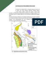 Recursos Naturales Del Precambrico Boliviano