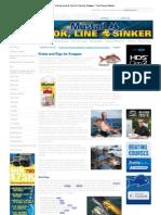 Snapper Fishing