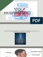 patologias APARATO RESPIRATORIO