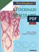 pruebas musculares