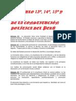 Artículo 13