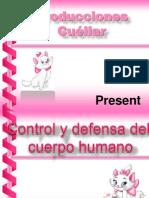 Coordinacion y Defensa Del Cuerpo Humano 2013 2014